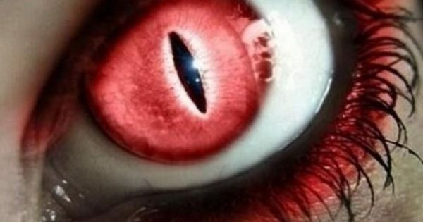 vampire eyes red contact lenses with demons gloss. Black Bedroom Furniture Sets. Home Design Ideas