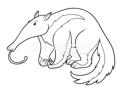 Coloring Book Coloring Books Art Creatures
