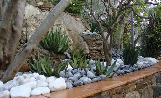 Jardins contemporain id es pour la maison pinterest for Jardins tropicaux contemporains