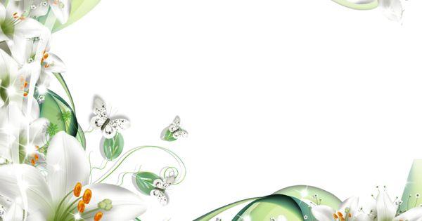 flores-blancas.png (800×600) | moldura | Pinterest