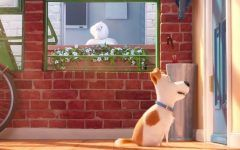 Comme Des Betes 2016 Film Complet Streaming Vf Comme Des Betes Comme Des Betes Film Film D Animation