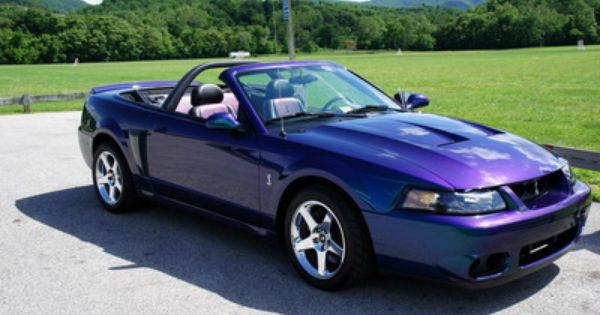 Mystichrome Cobra Would Love To Have This Mustang Cobra Mustang Cars Mustang