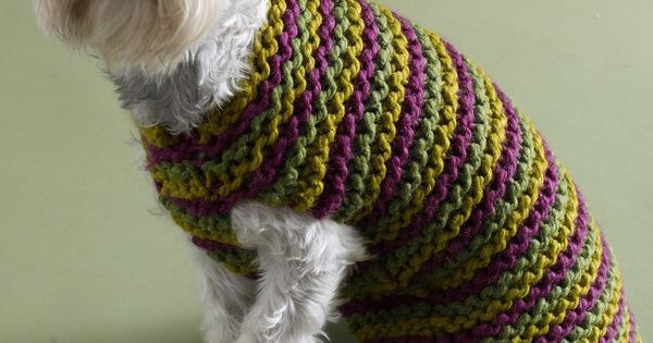 Free Easy Knitting Patterns For Medium Dog Jumpers : Free Easy Crochet Patterns KNITTING PATTERNS FREE DOG SWEATERS   FREE KNITT...