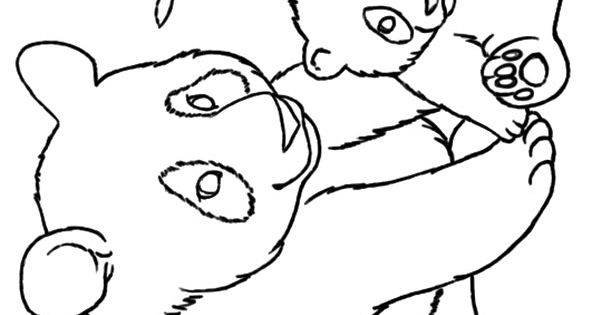 Top 25 Panda Bear Coloring Pages