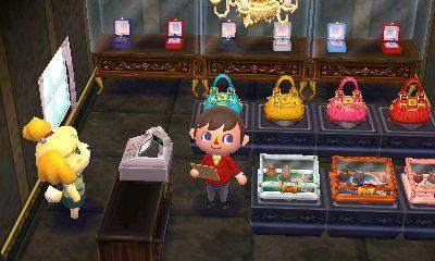 Animal Crossing Happy Home Designer Blog Day 25 Animal Crossing Happy Home Designer Animal Crossing Game