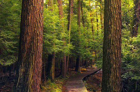 15 Most Beautiful Places To Visit In Pennsylvania Spring Pennsylvania And Beautiful Places
