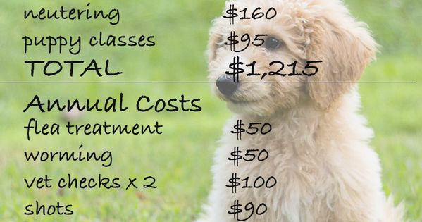 How Much Does A Dog Really Cost Dog Training Dog Care Dog Training Techniques