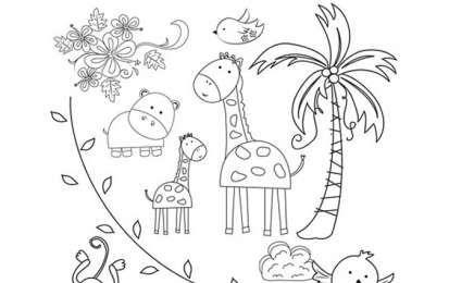 Immagini Di Animali Da Colorare Animali Della Foresta Immagini Animali Idee Per Disegnare