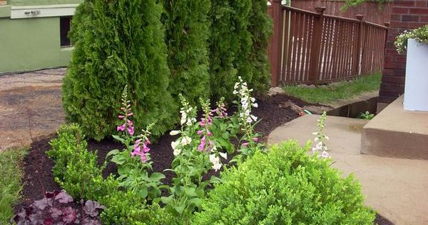 Layering Evergreens And Flowering Shrubs Will Create Visual Interest Year Round And Provide A