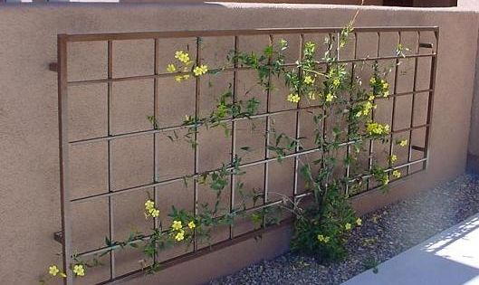An Outdoor Metal Trellis Similar To This Mounted On Your