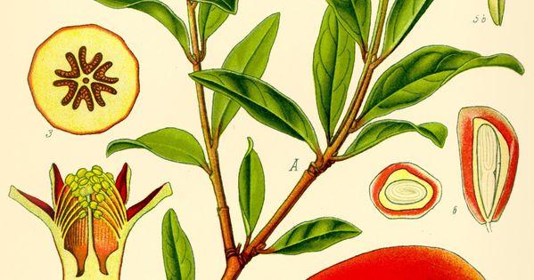 o que é rosh hashana