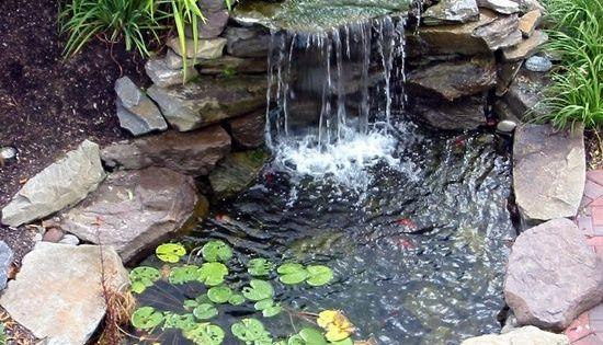 Top 17 brick rock garden waterfall designs start an for Decorative pond fish crossword clue