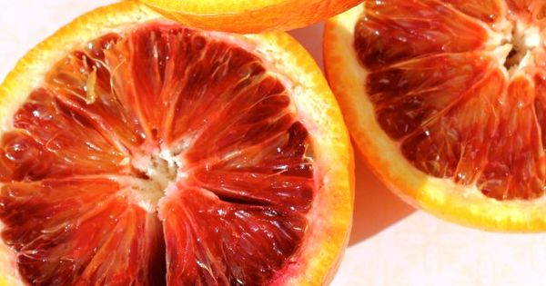 Bloody Orange Maria | Food and Booze too | Pinterest | Orange and ...