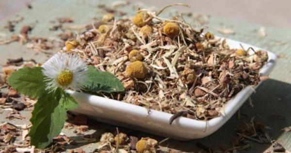 Pms Cramp Tincture Mix Herbalism Herbal Tinctures Tinctures