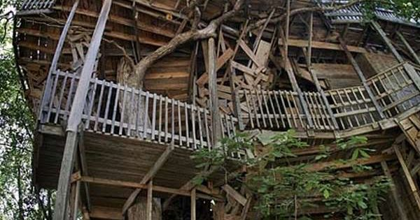 Measuring over 100 feet, this colossal tree house beats record after record.