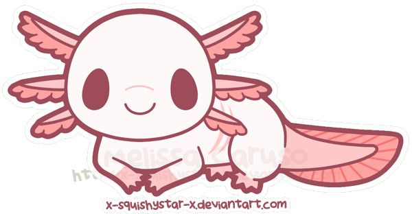 An Animated Axolotl By X Squishystar X On Deviantart