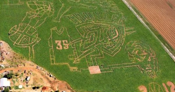 Jerry And Nancy Reding Carved The Thunder Corn Maze You See On The Right Into Their Field In Chickasha Ok Oklahoma City Thunder Okc Thunder Oklahoma Tourism