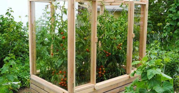 tomatengew chshaus garten pinterest gardens garten and urban gardening. Black Bedroom Furniture Sets. Home Design Ideas