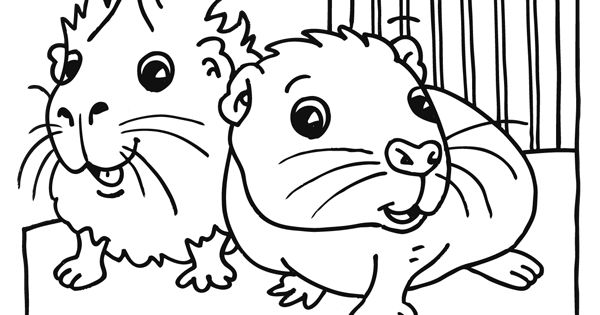 msn coloring pages - photo#44