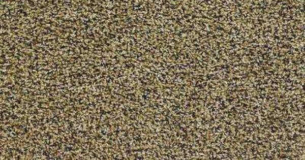 Palmetto Color Sandalwood Twist 12 Ft Carpet 1080 Sq Ft Roll Texture Carpet Indoor Carpet Carpet