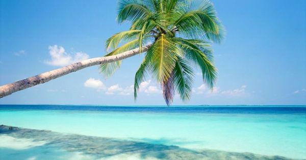 Punta Cana ...