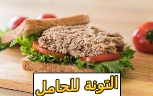 التونة للحامل فوائدها وأضرارها Tuna Sandwich Food Tuna