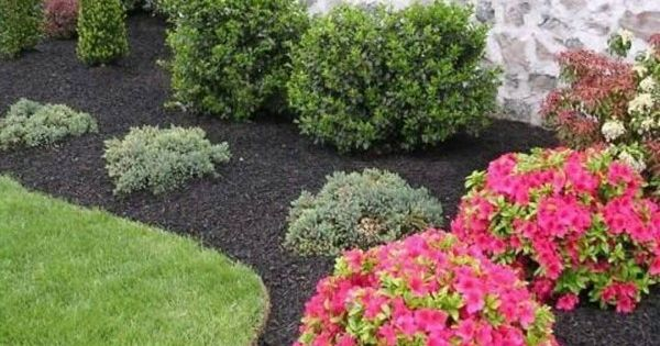 Inexpensive Landscape Ideas; I love the dark mulch with bright colored flowers/shrubs!