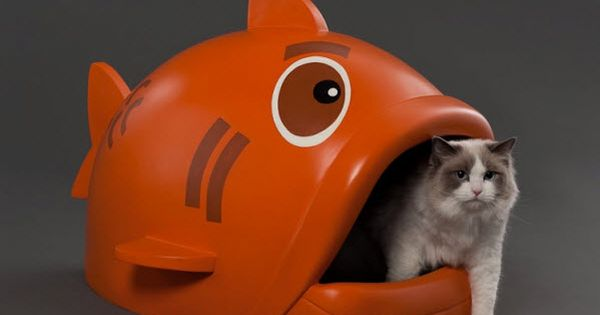 Fish Kitty Litter Box - Ha! Ha! Ha!