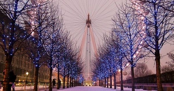 London Eye, London, England, All lit up. Travel Places