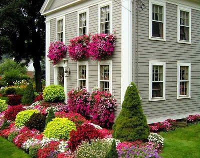 Colorful Garden! If only I had a green thumb!