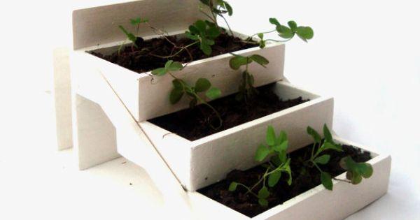 Jardinera en escalera como idea se puede hacer con cajas - Jardineras en escalera ...
