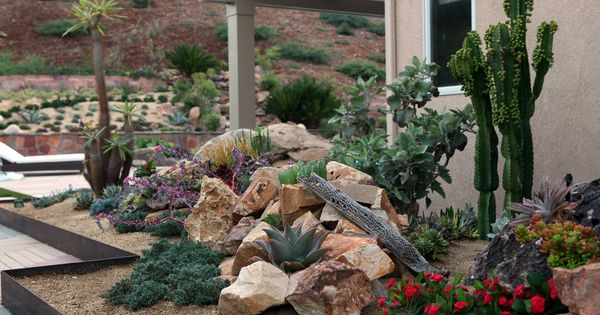 Fresh Idea For Xeriscape Landscaping | Use Xeriscape to Save ...