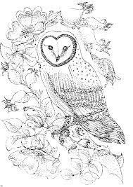 Imagen Relacionada Com Imagens Riscos Para Pintura Desenhos