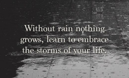 Pinterest Life Quotes: Without Rain Quotes Quote Life Inspirational Wisdom Lesson