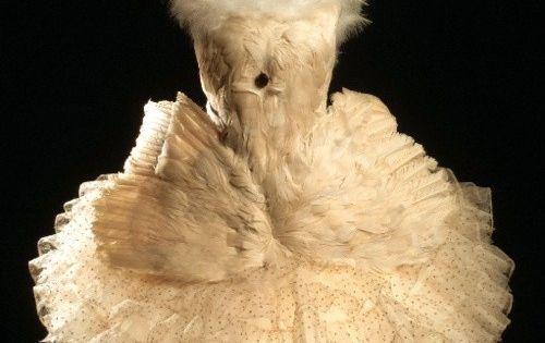 Costume designed by Leon Bakst for Anna Pavlova in Swan Lake. Anna