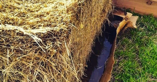 How To Condition Straw Bales Gardens Conditioning And Seasons