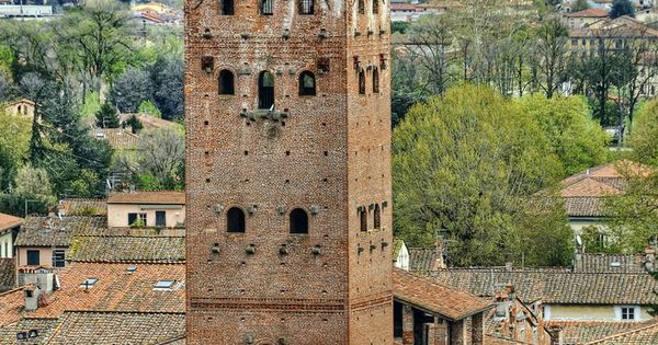 The Torre Guinigi, Tower in Lucca, Tuscany, Italy.