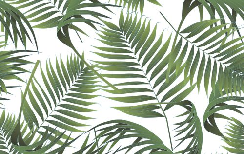 Crimean palm leaves pattern  Palme  Pinterest  수채화, 패턴 및 사진