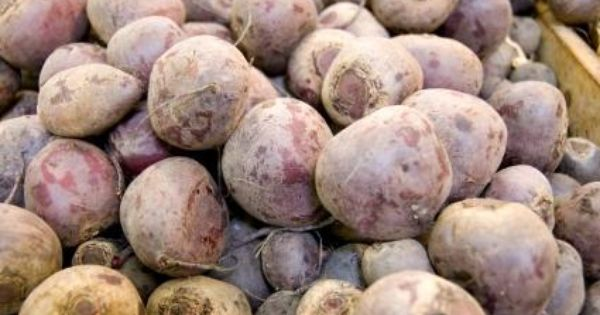 Pro And Con Of Gmo Lovetoknow Sugar Beet Food Genetically Modified Organism List