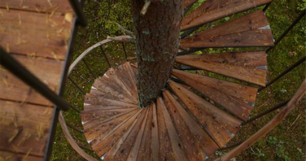Spiral stair tree house
