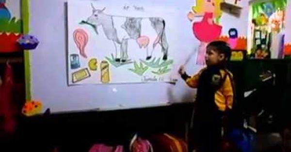Pin On Disertación De La Vaca