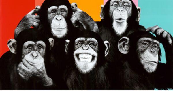 The chimp compilation pop art print poster p sters na posters pinterest - Deco schilderij gang ...