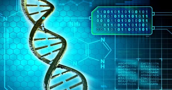 Pin On Dna Editing