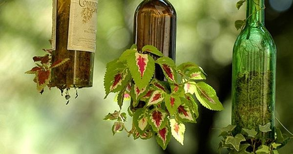 wine bottle plant hangers ~ I think using beautiful, old bottles would