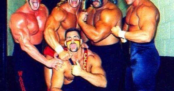 Animal And Hawk, Nikita Koloff, Lex Luger, And Sting All