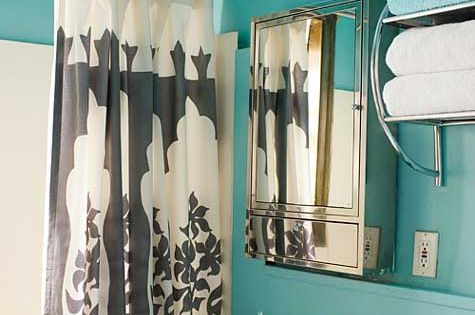 Beautiful Wall Color and Shower Curtain