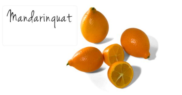 Mandarinquat Hostess Gifts Chinese New Year In The Flesh