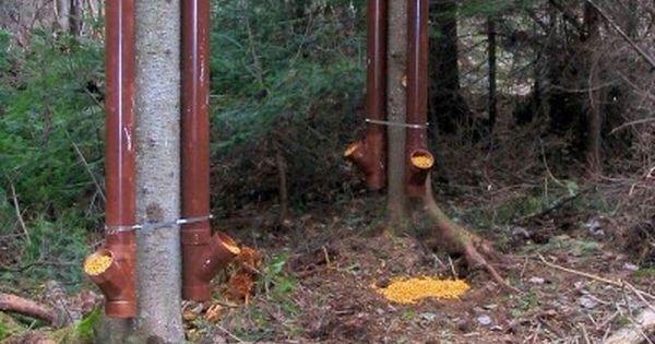 Pvc deer feeders deer feeder pinterest pvc deer for How to build a deer feeder out of pvc pipe
