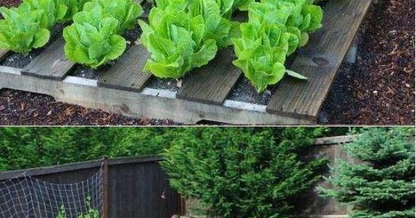 Pallet Garden | composteira | Pinterest | Horta ...