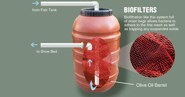 Biofilter for aquaponics the biological filter or for Biological pond filter design